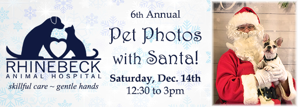 Pet Photos with Santa - 2019!